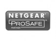 Logotipo Netgear Prosafe